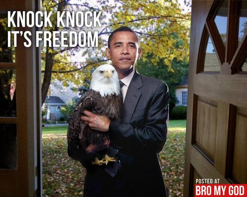 obama_freedom_eagle.jpg